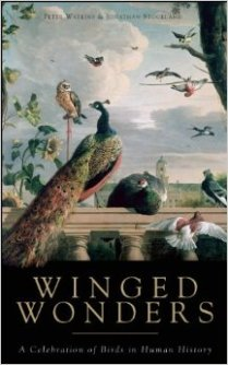 WingedWonders