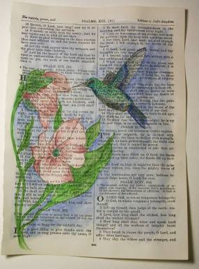 jacquidunham-hummingbird