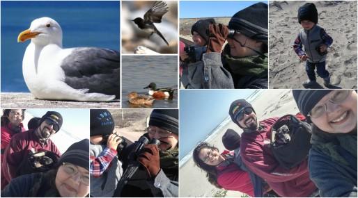 2.19.18 Ocean Park Birdwatching